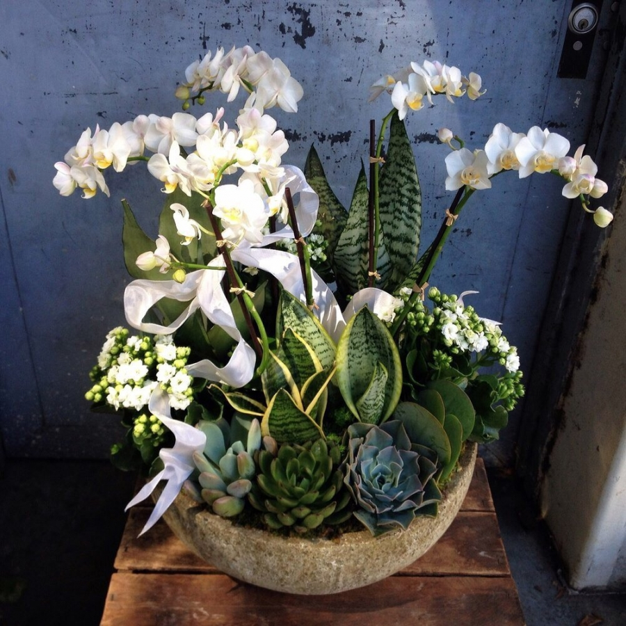 White Wooden Planters