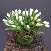 Tulips Abounding